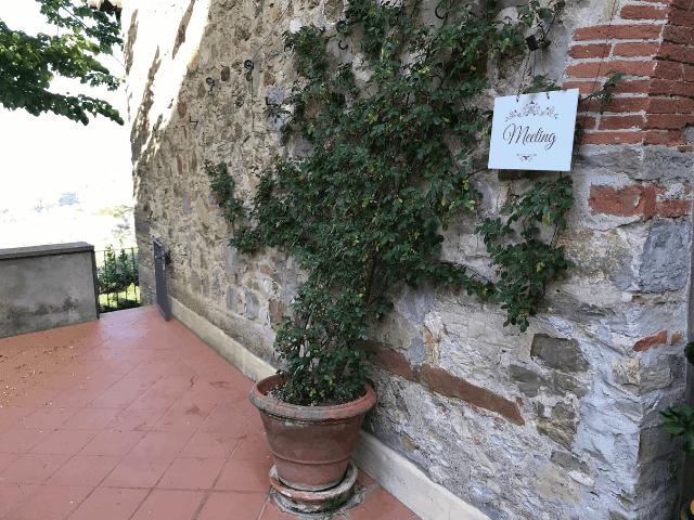 BorgoiVicelli46